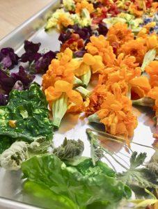 Liofilizowane jadalne kwiaty
